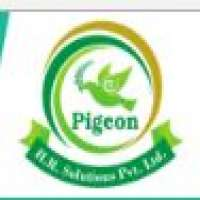 pigeon-hr-solutions