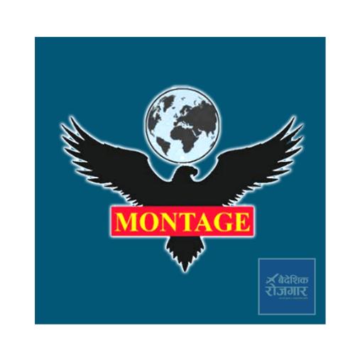 montage-overseas